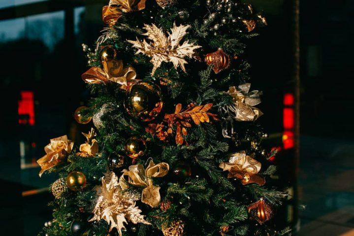Vánoce pohoda nebo stres? Nebo jak mám v plánu přežít svátky